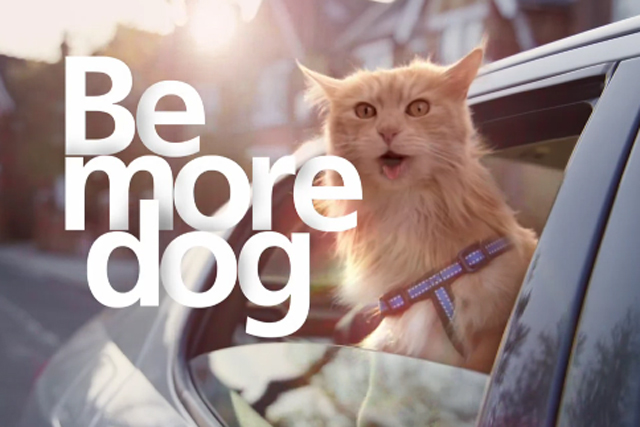O2 Be More Dog - From TV Ad - GoogleImages
